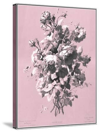 Dussurgey Roses on Pink-Dussurgey-Stretched Canvas Print