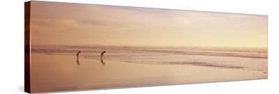 Two Children Playing on the Beach, San Francisco, California, USA--Stretched Canvas Print
