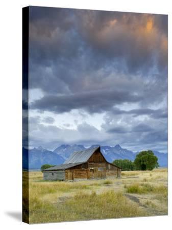 Old Barn and Teton Mountain Range, Jackson Hole, Wyoming, USA-Michele Falzone-Stretched Canvas Print