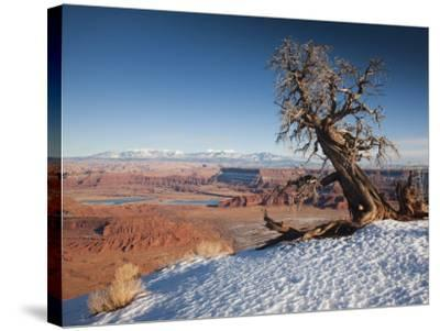 Utah, Moab, Dead Horse Point State Park, View of the Meander Canyon, Winter, USA-Walter Bibikow-Stretched Canvas Print