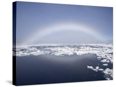 Anthelion, Svalbard Islands, Arctic, Norway, Europe-James Hager-Stretched Canvas Print