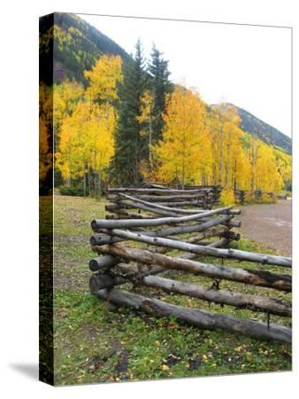 Wooden Fence in the Mountains of Colorado-David Edwards-Stretched Canvas Print