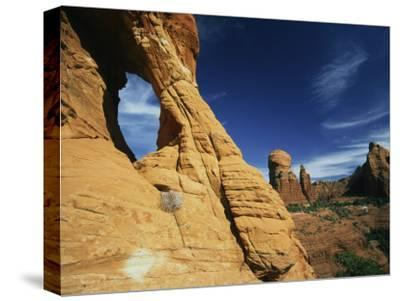 Red Rocks of Sedona-Martin Gray-Stretched Canvas Print