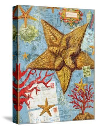 Vintage Botanical Starfish Print-Bessie Pease Gutmann-Stretched Canvas Print