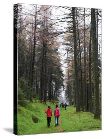 Hikers Walking in Brecon Beacons National Park, South Wales, Uninted Kingdom, Europe-Christian Kober-Stretched Canvas Print