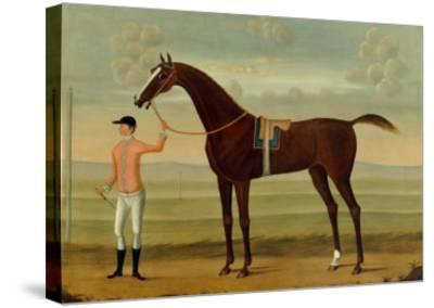 A Bay Racehorse with his Jockey on a Racecourse-Daniel Quigley-Stretched Canvas Print