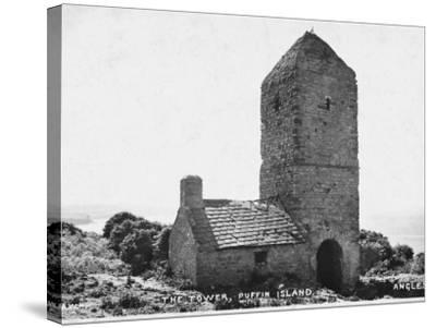 The Tower, Puffin Island, Anglesey--Stretched Canvas Print