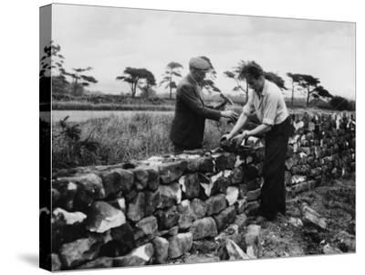 Dry Stone Walling--Stretched Canvas Print
