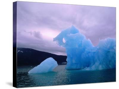 Icebergs are Surrounded by Body of Calm Water-Jeff Foott-Stretched Canvas Print