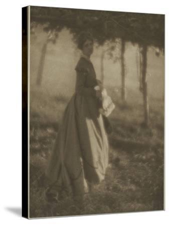 Camera Work July.1908 : the Arbor-Clarence White-Stretched Canvas Print