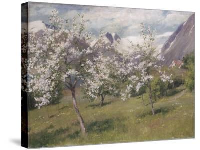 Norvège, verger en fleur (Harland) .1898-Johannes Martin Grimelund-Stretched Canvas Print