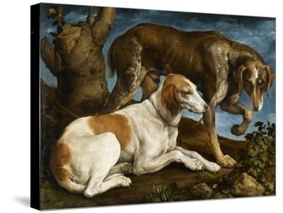 Deux chiens de chasse attachés à une souche-Jacopo Bassano-Stretched Canvas Print