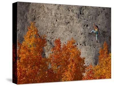 A Female Climber on a Cliff Wall-Bill Hatcher-Stretched Canvas Print