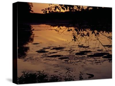 Sunset at Hematite Lake-Raymond Gehman-Stretched Canvas Print