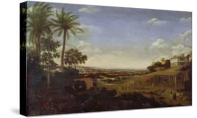 Brazilian Landscape with Sugar Mill, Armadillo and Snake, River Varzea- Post-Stretched Canvas Print