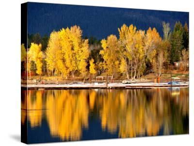 Autumn Colours on Shore of Lake Payette-David Ryan-Stretched Canvas Print