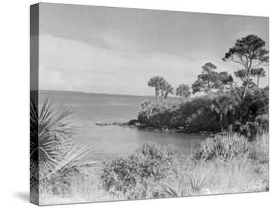 Seashore-George Marks-Stretched Canvas Print