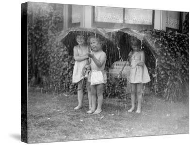 Summer Shower--Stretched Canvas Print