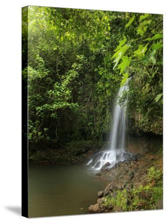 Kalihiwai Stream and Waterfall, Hawaii, USA-Douglas Peebles-Stretched Canvas Print