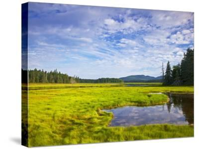 Bass Harbor Marsh in Acadia National Park, Maine, USA-Chuck Haney-Stretched Canvas Print