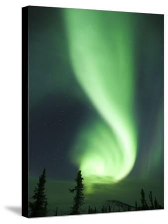 Aurora Borealis, Fairbanks, Alaska, USA-Julie Eggers-Stretched Canvas Print