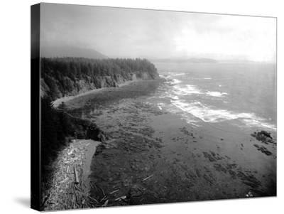 Coast South of Cape Flattery, 1910-Asahel Curtis-Stretched Canvas Print