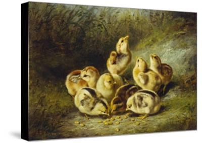Rather Hard Fare-Arthur Fitzwilliam Tait-Stretched Canvas Print