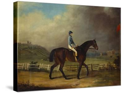 Mr. Hindley's Brown Filly 'Rosina' by 'Romulus' Ridden by the Owner on Lincoln Race Course-P. Ewbank-Stretched Canvas Print
