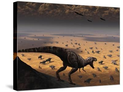 A Lone T. Rex Looks Down on a Large Herd of Triceratops-Stocktrek Images-Stretched Canvas Print