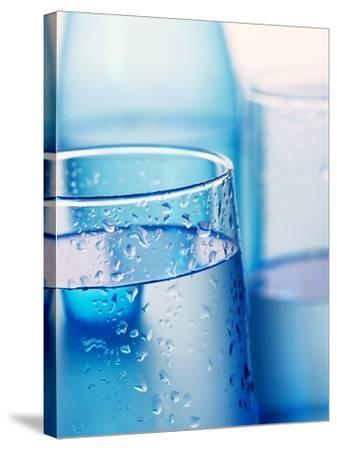 Bottle and glasses of water--Stretched Canvas Print