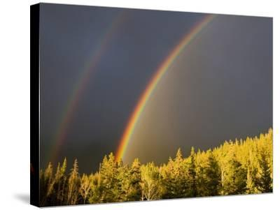 A Double Rainbow During a Storm in Banff National Parknear Banff Alberta, Canada.-Josh McCulloch-Stretched Canvas Print