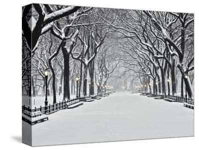 Central Park in Winter-Rudy Sulgan-Stretched Canvas Print