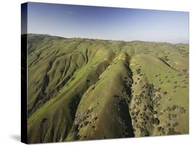 Tejon Ranch in California-Macduff Everton-Stretched Canvas Print