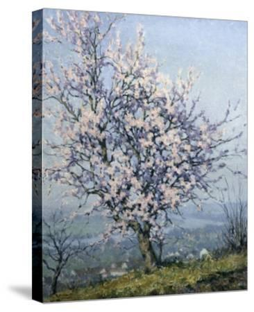 Spring-Emanuel Phillips Fox-Stretched Canvas Print