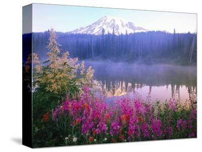 Wildflowers in Bloom by Lake on Mount Rainier-Craig Tuttle-Stretched Canvas Print