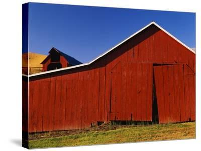 Red Barns-Stuart Westmorland-Stretched Canvas Print