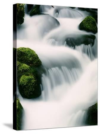Water cascading - Oregon-Craig Tuttle-Stretched Canvas Print