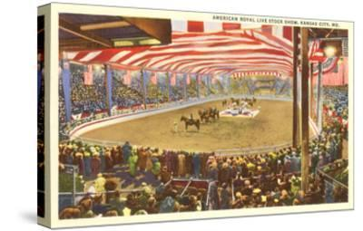 Livestock Show, Kansas City, Missouri--Stretched Canvas Print
