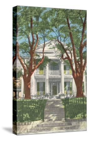 Stanton Hall, Natchez, Mississippi--Stretched Canvas Print
