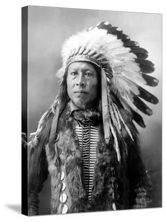 Sioux Brave, C1900-John Alvin Anderson-Stretched Canvas Print