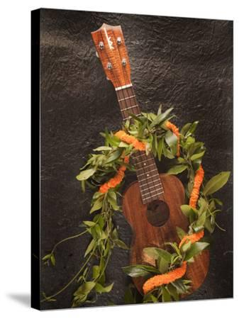 Ukulele, Hawaii-Douglas Peebles-Stretched Canvas Print