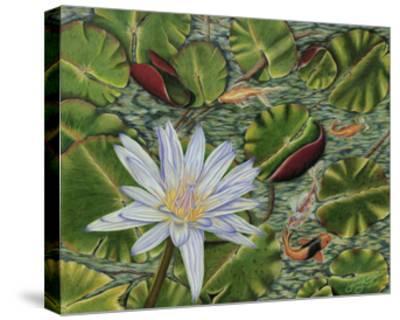 Enchanting Lily-Gloria J^ Callahan-Stretched Canvas Print