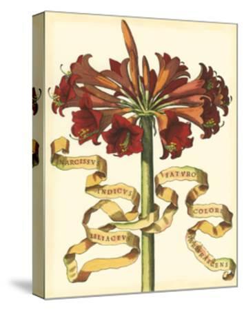 Ribbon Florals I--Stretched Canvas Print