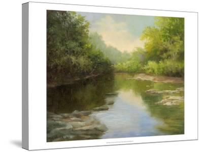 O'Bannon Summer Creek-Mary Jean Weber-Stretched Canvas Print