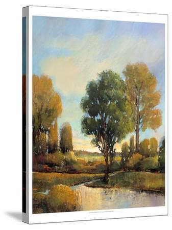 Riverside Light I-Tim O'toole-Stretched Canvas Print