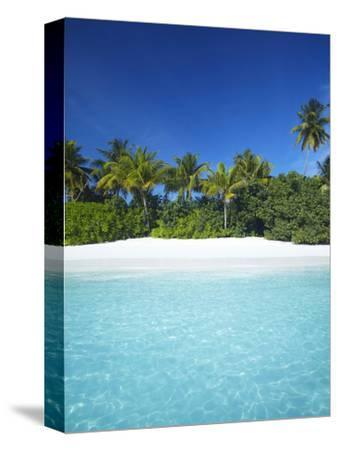 Tropical Beach, Maldives, Indian Ocean, Asia-Sakis Papadopoulos-Stretched Canvas Print