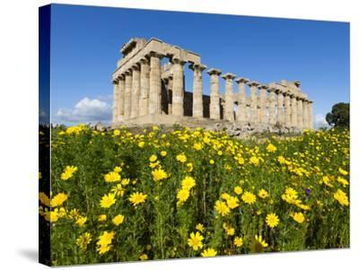 Selinus Greek Temple in Spring, Selinunte, Sicily, Italy, Europe-Stuart Black-Stretched Canvas Print