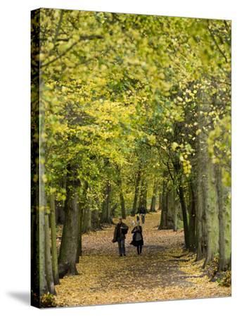 Hampstead Heath, North London, England, United Kingdom, Europe-Ben Pipe-Stretched Canvas Print