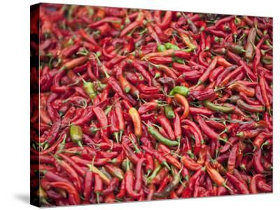 Red Chillies for Sale at Paro Open-Air Market, Red and Green Chillies are Very Important Ingredient-Nigel Pavitt-Stretched Canvas Print