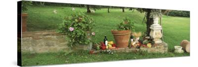 Wine Grapes and Foods of Chianti Region of Tuscany at Private Estate, Italy--Stretched Canvas Print
